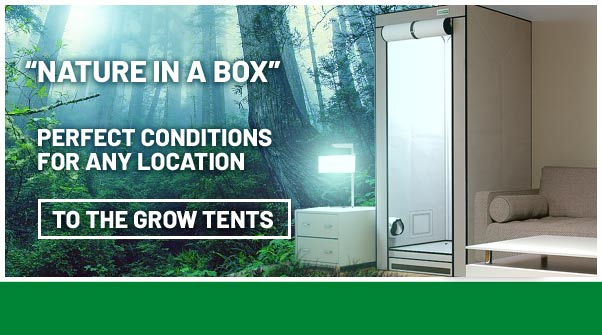 Buy Grow Tents online