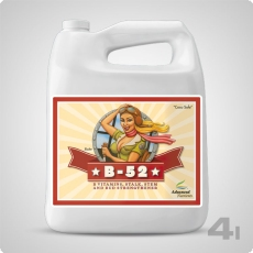 Advanced Nutrients B-52, 4 Liter