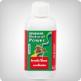 Advanced Hydroponics Growth/Bloom Excellerator, 250ml