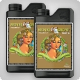 Advanced Nutrients pH Perfect Sensi Grow Coco A und B, 2x1 Litre