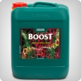 Canna Boost, 10 litres bloom stimulator