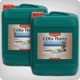 Canna COGr Flores A & B, 2x10 litres bloom booster