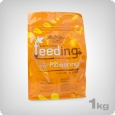 Green House Powder Feeding Short, 1 kg