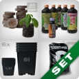 Starter Grow Kit, soil, mineral-based