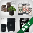 Starter Grow Kit, soil, organic